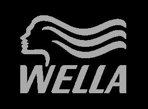 Parruccheria palermo, prodotti Wella